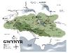 Gwynyr Map